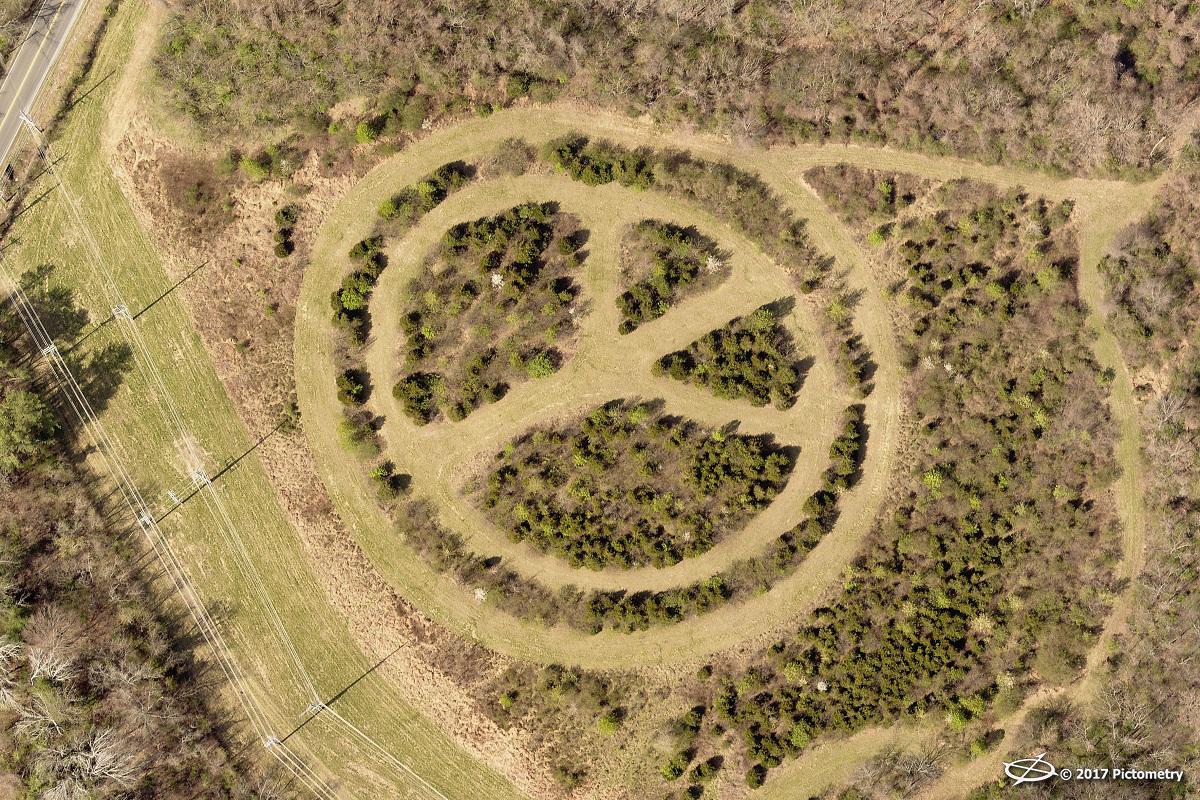 peace_sign_TN